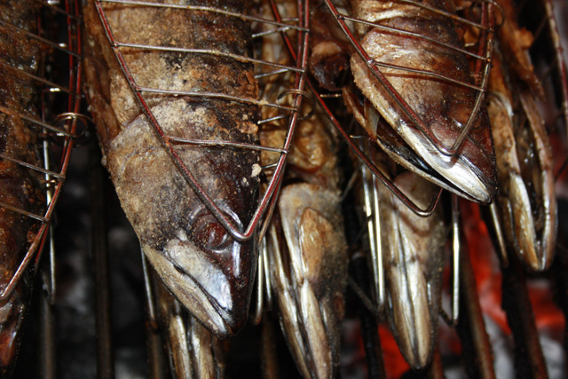 Makrelen vom Grill